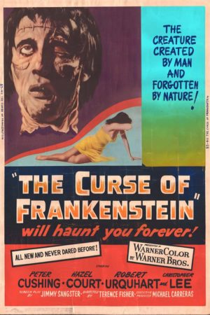 an alternative ending to frankenstein the novel The romantic in frankenstein  of frankenstein are made clear: its alternative title of  is victor frankenstein's, as the title of the novel.