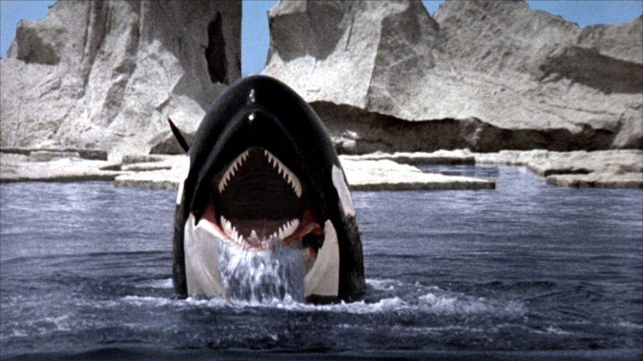 Orca backdrop