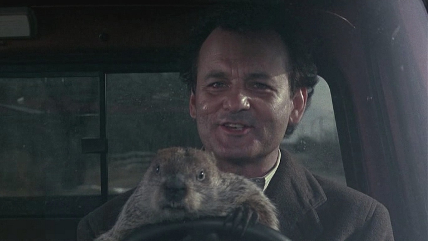 Groundhog Day backdrop