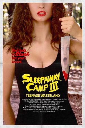 Sleepaway Camp III: Teenage Wasteland poster