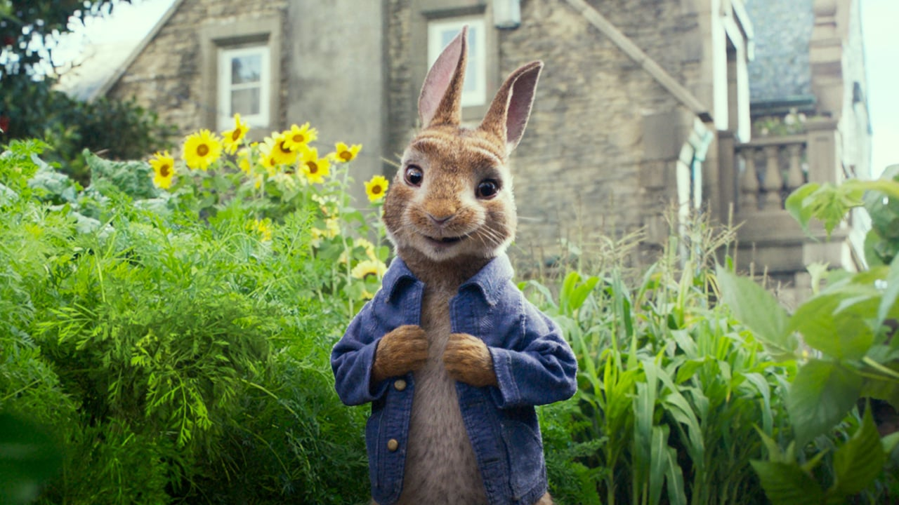 Peter Rabbit backdrop