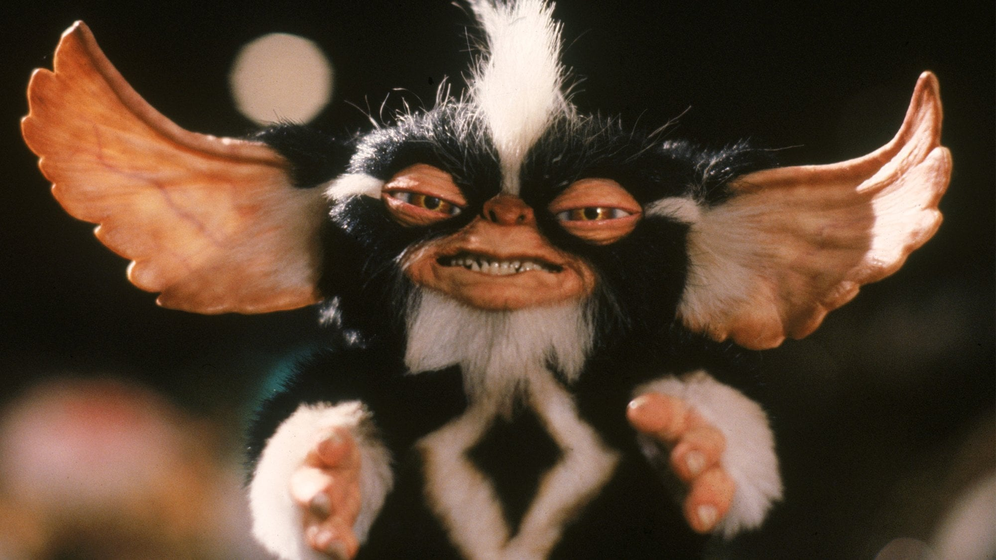 Gremlins 2: The New Batch backdrop
