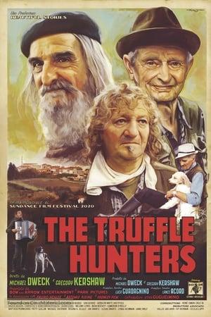 The Truffle Hunter poster